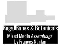 Bugs, Bones & Botanicals